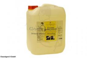 Spezialglasreiniger CleanAgent